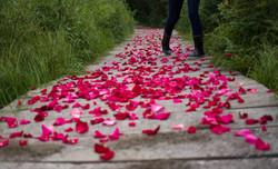 Engagement Flower Pedals