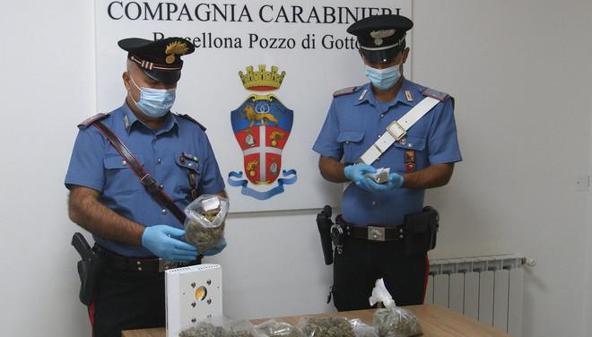 """""""King"""" e """"Riley"""" > due cani antidroga, in azione con i Carabinieri fanno arrestare tre persone <"""