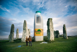 Country life milk