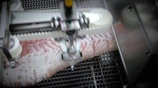 Baader waterjet cutter