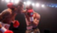 williams-rosario-fight (15).jpg