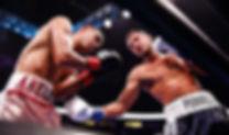 ramos-perrella-fight (1).jpg