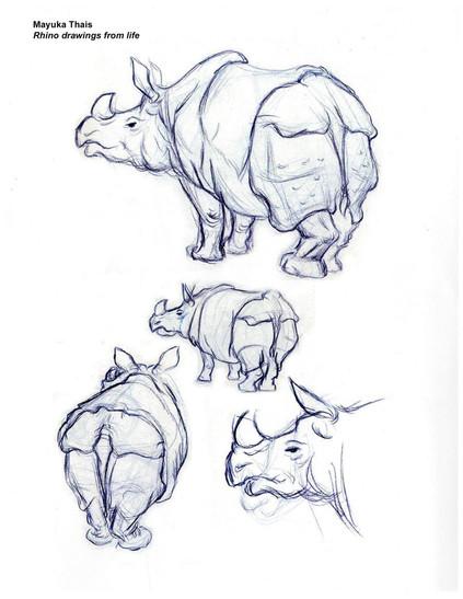 Rhino quick sketch 2005