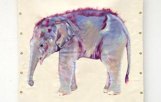Life-size baby Asian elephant painting 2014