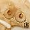 Thumbnail: Boucles d'oreilles Liv (acier chirurgical plaqué or & Oeil de Tigre)
