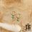 Thumbnail: Boucles d'oreilles Élé de plusieurs couleurs (acier chirurgical plaqué or)