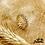 Thumbnail: Bague Autumn Leaves (plaqué or & oxydes de zirconium)