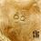 Thumbnail: Boucles d'oreilles Polar (acier chirurgical plaqué or)