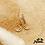 Thumbnail: Boucles d'oreilles Lune (plaqué or et oxyde de zirconium)