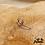 Thumbnail: Monoboucle Bling (plaqué or ou argent & oxydes de zirconium)