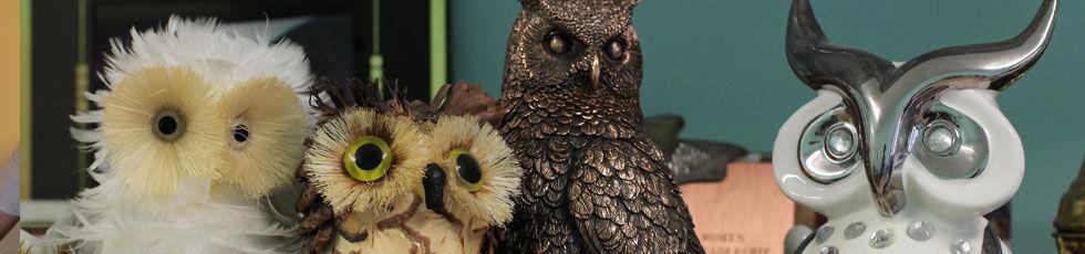 owl – school mascot