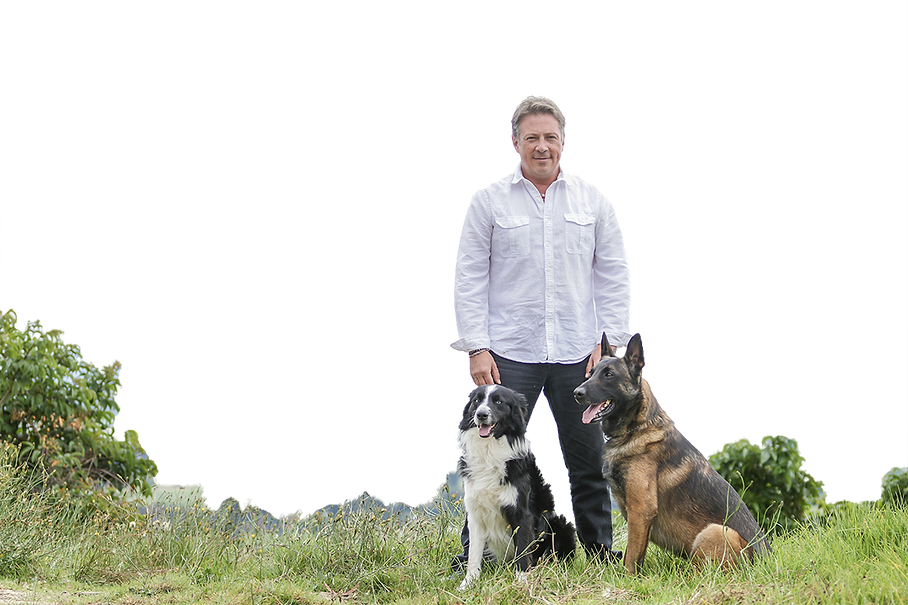 Servicios Caninos | Bogotá | MARK LEE Sabiduría Canina