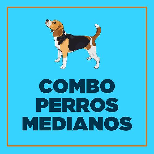 COMBO PERROS MEDIANOS