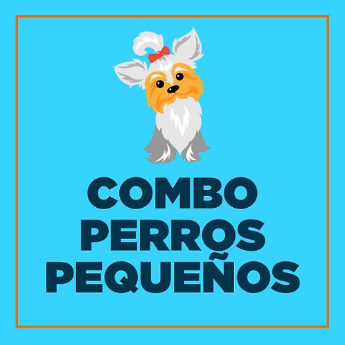 COMBO PERROS PEQUEÑOS