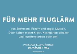 Fluglärm_rough