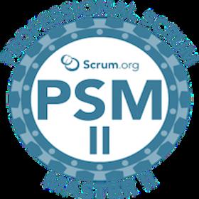 1PSM II Logo.png