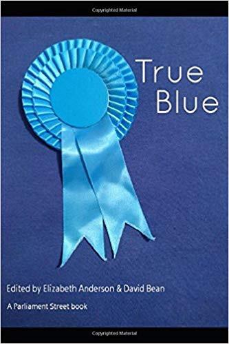 Dean Russell Essay on Artificial Intelligence In True Blue