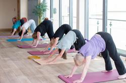 acanthus-yoga-studio-tingley-4707.jpg