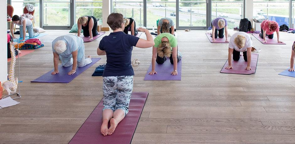 acanthus-yoga-studio-tingley-4702.jpg
