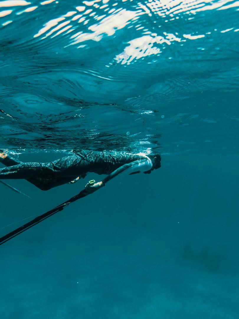 Andrej diving