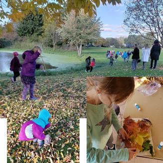 Fall Discovery Hike and Leaf Art