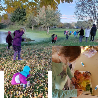 Fall Discovery Hike and Leaf Art