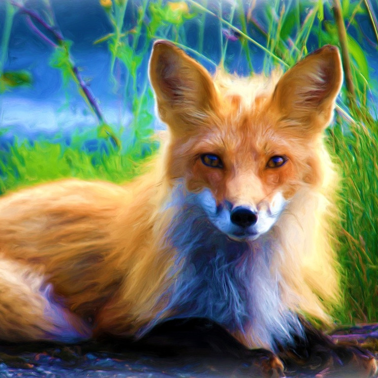 Foxy Women: A Storytelling Show Just for Foxies
