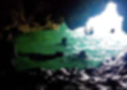 cove 2 swimming.jpg