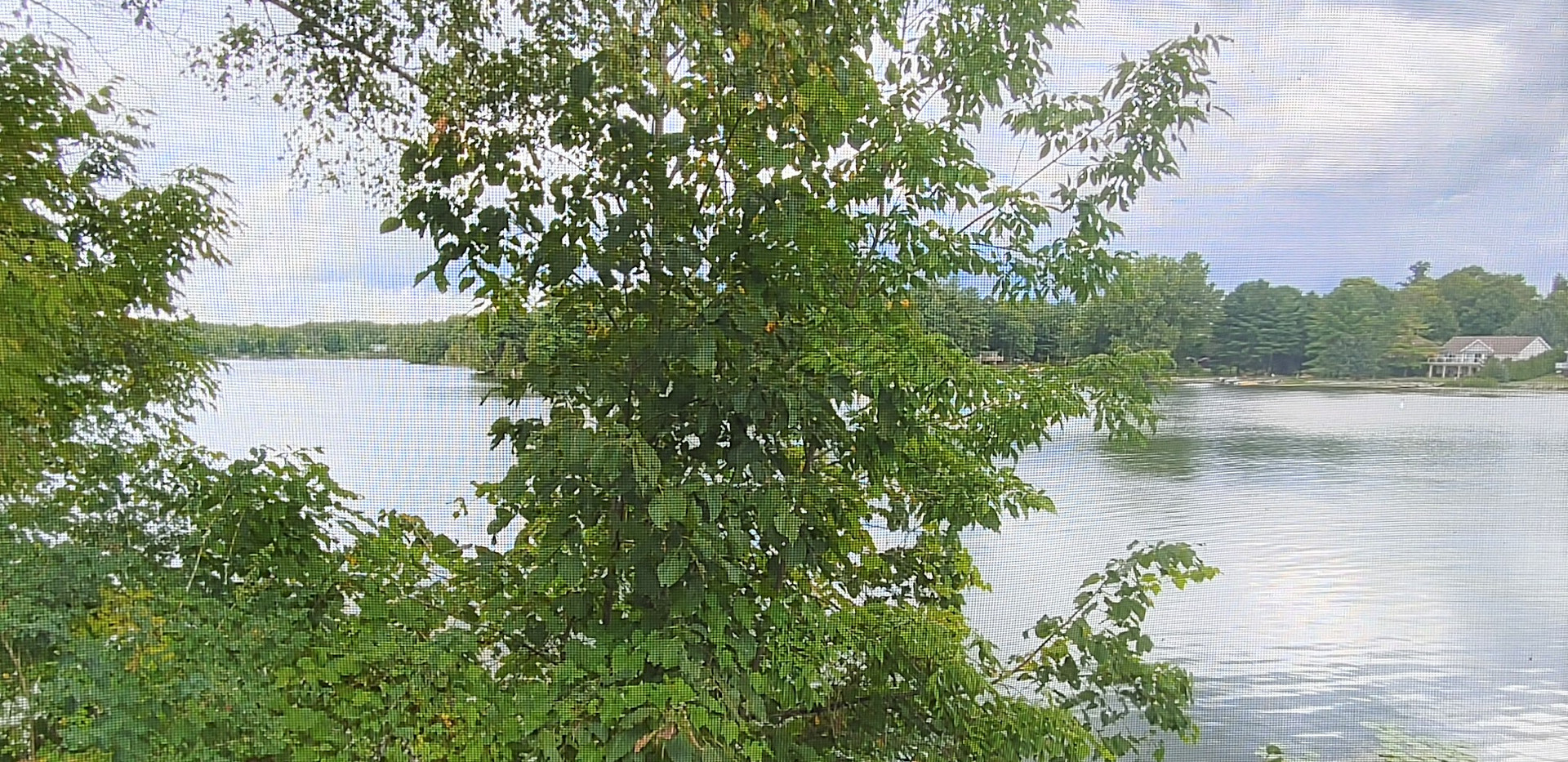 VIEW OF WATER FROM COTTAGE 3 SCREENED IN