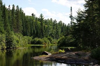 algonquin-provincial-park-1748100_1920.j