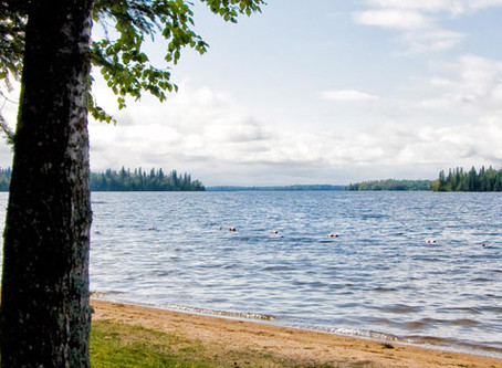 Borrow a Summer Provincial Park Pass From Hastings Highlands Public Library