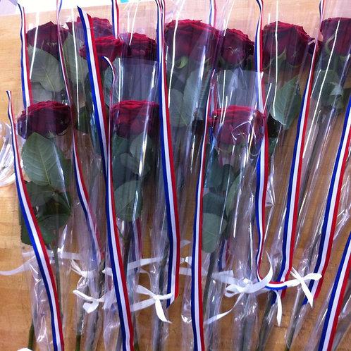Rose individuelle ruban