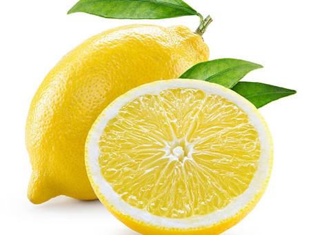 DIY Plantations : Faire pousser nos pépins de citron 🍋