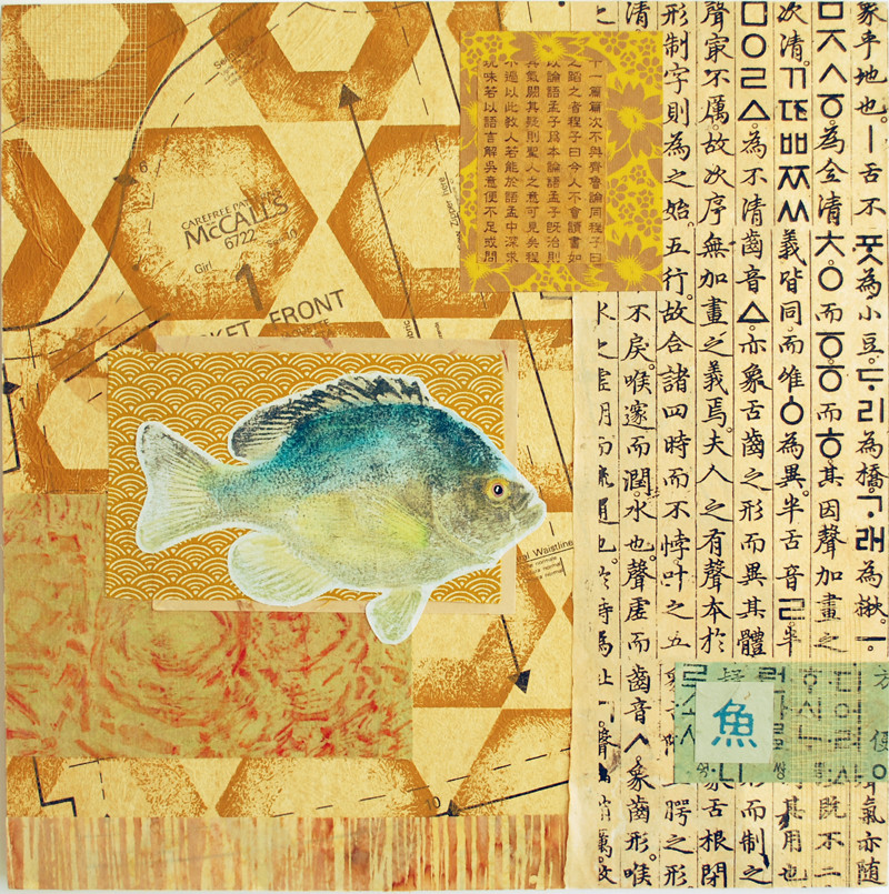 Peixe 14