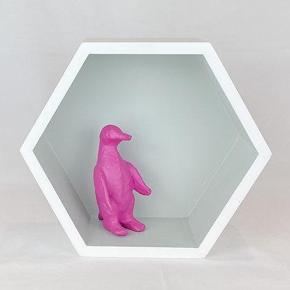 Curio Box, Hexagon