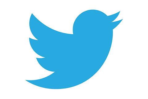 Twitter-icon-horizontal.jpg