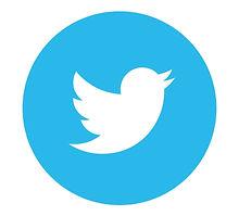 92-921022_d-group-leader-application-twitter-round-logo-png_edited.jpg