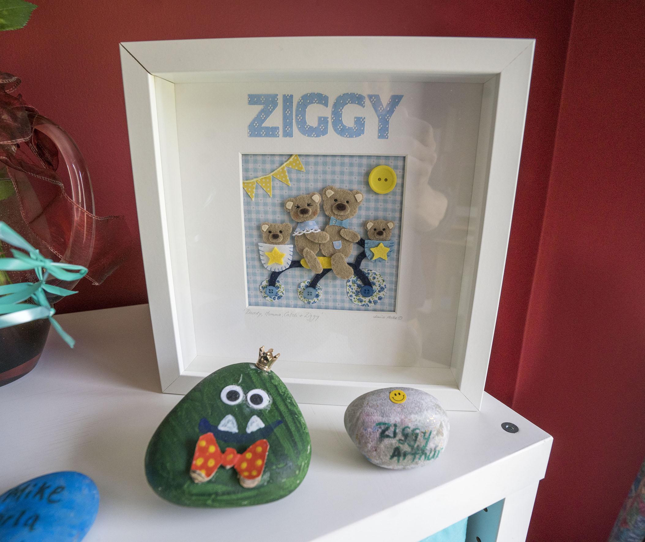 Ziggy 22
