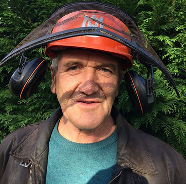 Dai Thompson tree surgeon arborist