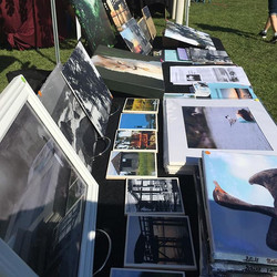 Still Nature Photography is making a return to the tybee lighthouse market this coming Sunday the 20