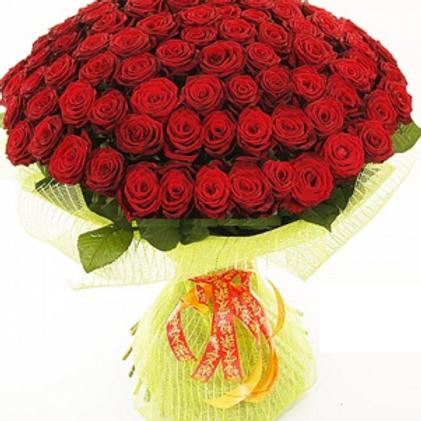 """Розы бордовые """"Ред Наоми"""" 50 см 101 шт."""