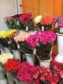 большой выбор роз из Экадора