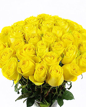 """Розы желтые """"Тара"""" 50см 45 шт."""