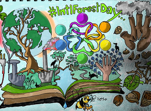 International Day of Forests #IntlForestDay