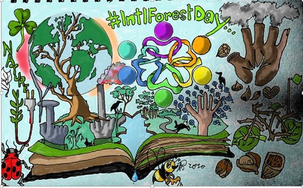 International Forest Day Illustration by John Dalziel for Ancient and Sacred Trees