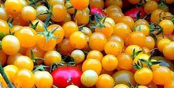 Tomato - Wild Gold Rush Currant