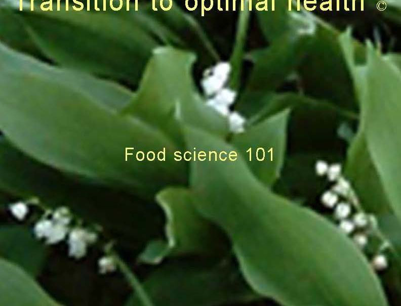Transition to optimal health