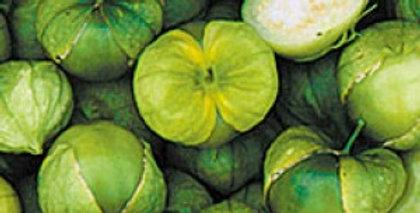 Tomatillo - grande verde