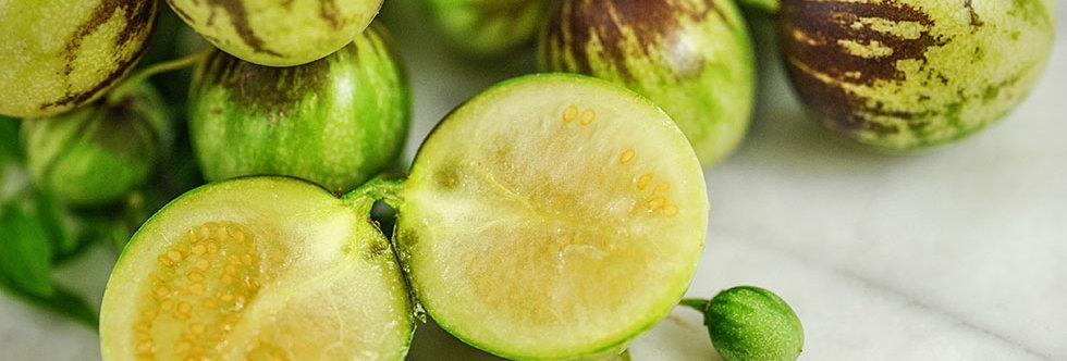 Tzimbalo 'melon Pear