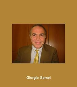giorgio gomel image.png